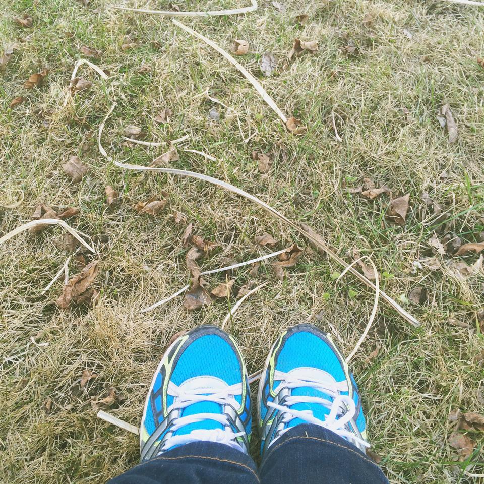 Winter grass strands