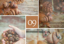Colors of 2013 with Eva Ricci Studio – September in Brown